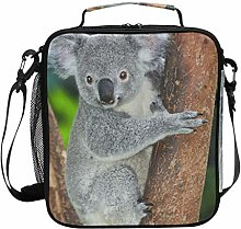 DOSHINE Insulated Lunch Bag Cute Animal Koala Tree