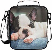 DOSHINE Insulated Lunch Bag French Bulldog Animal