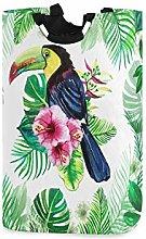 DOSHINE Laundry Basket, Exotic Bird Toucan