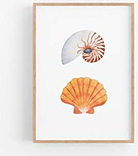 Dozili Seashell print nautilus shell beach decor