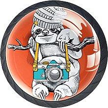 Drawer Knobs Sloth with Camera Round Kitchen