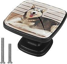 Drawer Pull Handle with Screws Animal Dog DIY