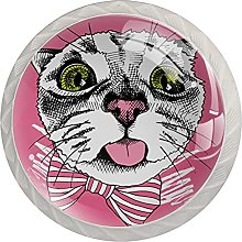 Drawer Pull Handle with Screws Cute Cat DIY Glass