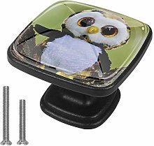 Drawer Pull Handle with Screws Doll owl DIY Square