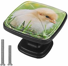 Drawer Pull Handle with Screws Meadow Chick DIY