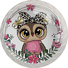Drawer Pull Handle with Screws Owl DIY Glass