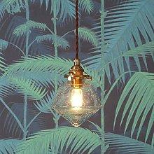 DSYADT Glass Pendant Light Fitting Vintage