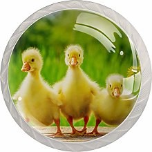 Duck Animal Yellow 4 Pieces Crystal Glass Wardrobe