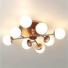 Durable Exquisite Ceiling Light,Ceiling Lamps