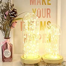 DVMRUIB Decorative Lights 2M/6.7Ft 20 Warm White