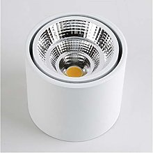 DZHT Dimmable LED Downlight COB Spotlight