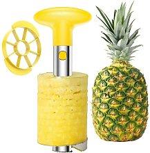 Easy Kitchen Tool Stainless Steel Fruit Pineapple