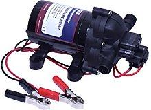 Eccotemp EccoFlo Diaphragm 12V Pump & Strainer,