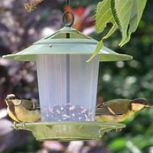 Eco Beacon Bird Feeder