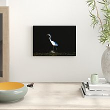 Egret Bird Photographic Print Big Box Art