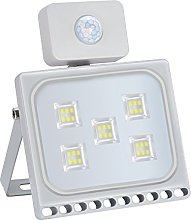 ELEING 30W Security Light with Motion Sensor,LED