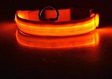 Elenxs New LED Pet Dog Collar Flashing Glow Dog
