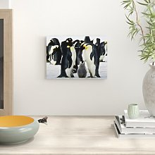 Emperor Penguins Photographic Print Big Box Art