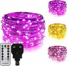 ErChen Dual-Color LED String Lights, 33 FT 100