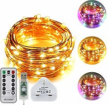 ErChen USB Dual-Color Led String Lights, 33FT 100