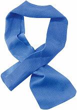 Ergodyne - CHILL-ITS COOLING TOWEL 10CM X 75CM -