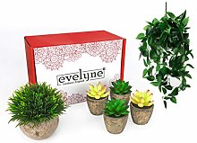 Evelyne 5pc Artificial Hanging Plants & Small