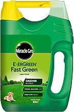 EverGreen Fast Green 80m2 Spreader - 119687