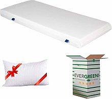 EVERGREENWEB ✅ Single Mattress 120x200 in