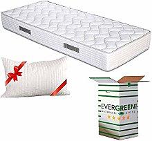 EvergreenWeb - Single Mattress 80 x 190 cm Height