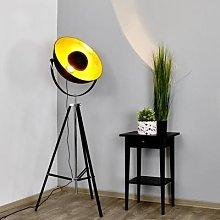 Extravagant floor lamp Mineva in black and gold