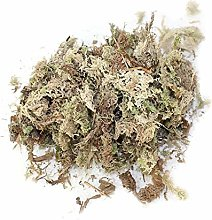Exuberanter Sphagnum Moss Dried - Dry Moss