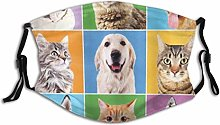 Fabric Face Mask Animal Cute Various Dog And Cat