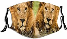 Face Guard Lions Animal Male Big Jungle Wild Lion