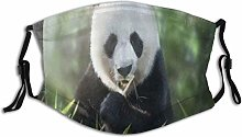 Face Mask Cover Animal Cute Panda Eating Bamboo In