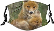 Face Mask With Filter Animal Two Fox Babies In The