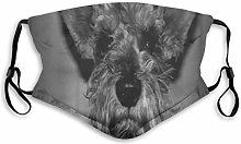Face Masks Adorable Dog Portrait Schnauzer Mini