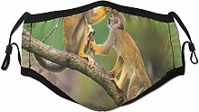 Face Scarf Animal Squirrel Monkeys In Jungle