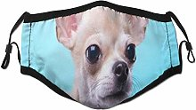 Face Scarf Beautiful Chihuahua Dog Face Animal