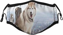 Face Scarf Purebred Animal Fluffy Pet Siberian