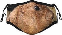 Face Scarf Squirrel Funny Animal Singer Balaclava
