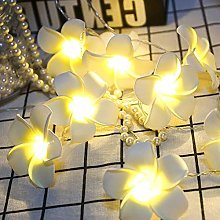 Fairy Lights LED Vintage Flower Floral String