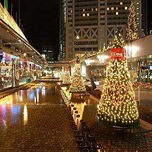Fairy Net Lights Outdoor Waterproof For Christmas