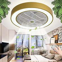 Fan Ceiling Lamp with 80W LED Invisible Can Timing