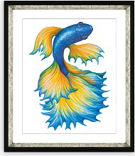 Fancy Fish 1 - Framed Print & Mount, 56 x 46cm,