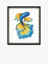 Fancy Fish 1 - Framed Print & Mount, 56 x 46cm,