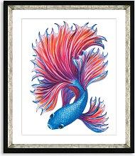 Fancy Fish 2 - Framed Print & Mount, 56 x 46cm,