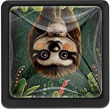 FCZ 3 Pieces Sloth in Jungle Rainforest Drawer