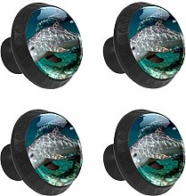 FCZ 4 Pieces Cute Atlantic Dolphins Drawer Knobs