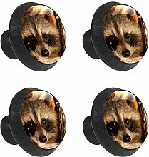 FCZ 4 Pieces Cute Raccoon Drawer Knobs Pull Handle