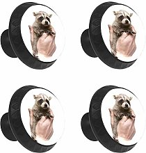 FCZ 4 Pieces Cute Raccoons Cub Drawer Knobs Pull